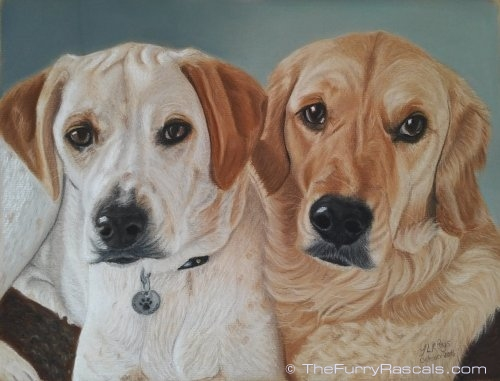 White Cyprus Pointer and Golden Retriever double portrait painting in soft pastels - The Furry Rascals, Cyprus